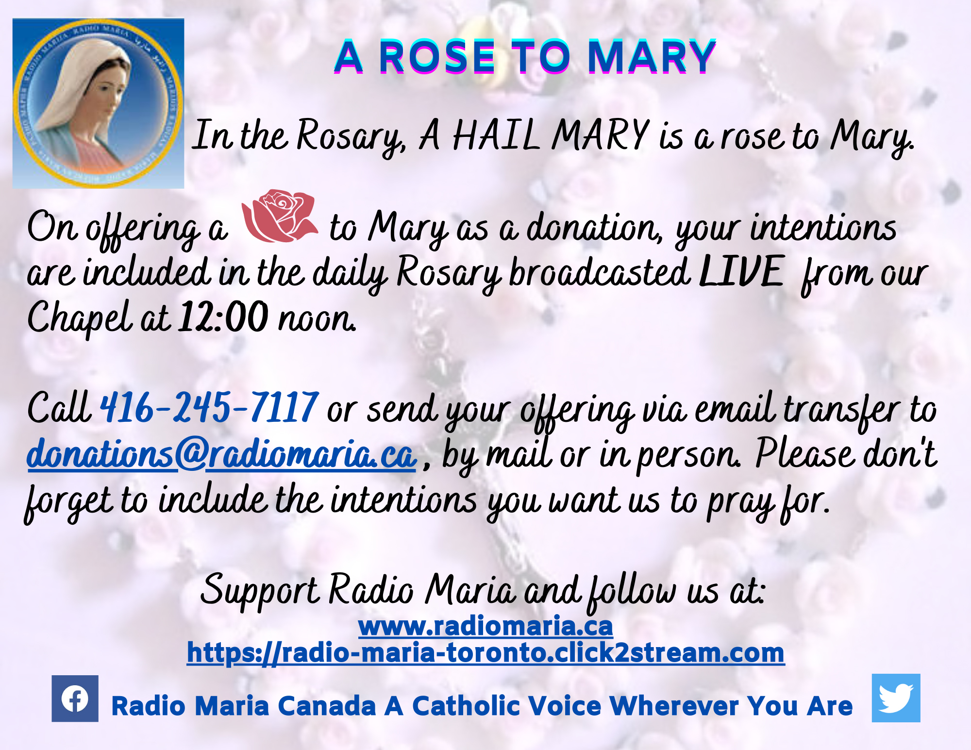 A Rose to Mary